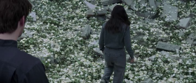 hunger-games-flower-bomb